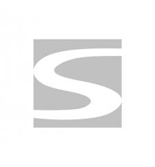 logo_schreder_gray